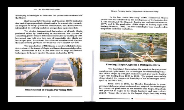 Tilapia Farming in the Philippines