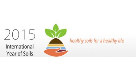 2015 International Year of Soil
