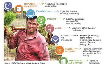 The E-agriculture Strategy competing for a prestigious international prize – Please vote to help the strategy win!
