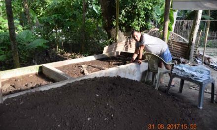 Reaping benefits through vermicomposting
