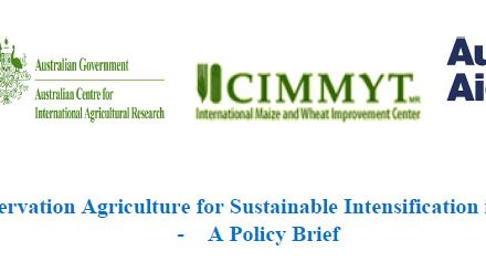 Scaling Conservation Agriculture for Sustainable Intensification in South Asia –	A Policy Brief