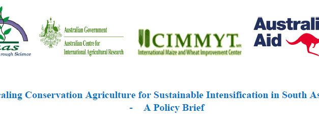 Scaling Conservation Agriculture for Sustainable Intensification in South Asia –A Policy Brief