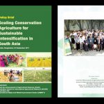 Scaling Conservation Agriculture for Sustainable Intensification in South Asia – Policy Brief