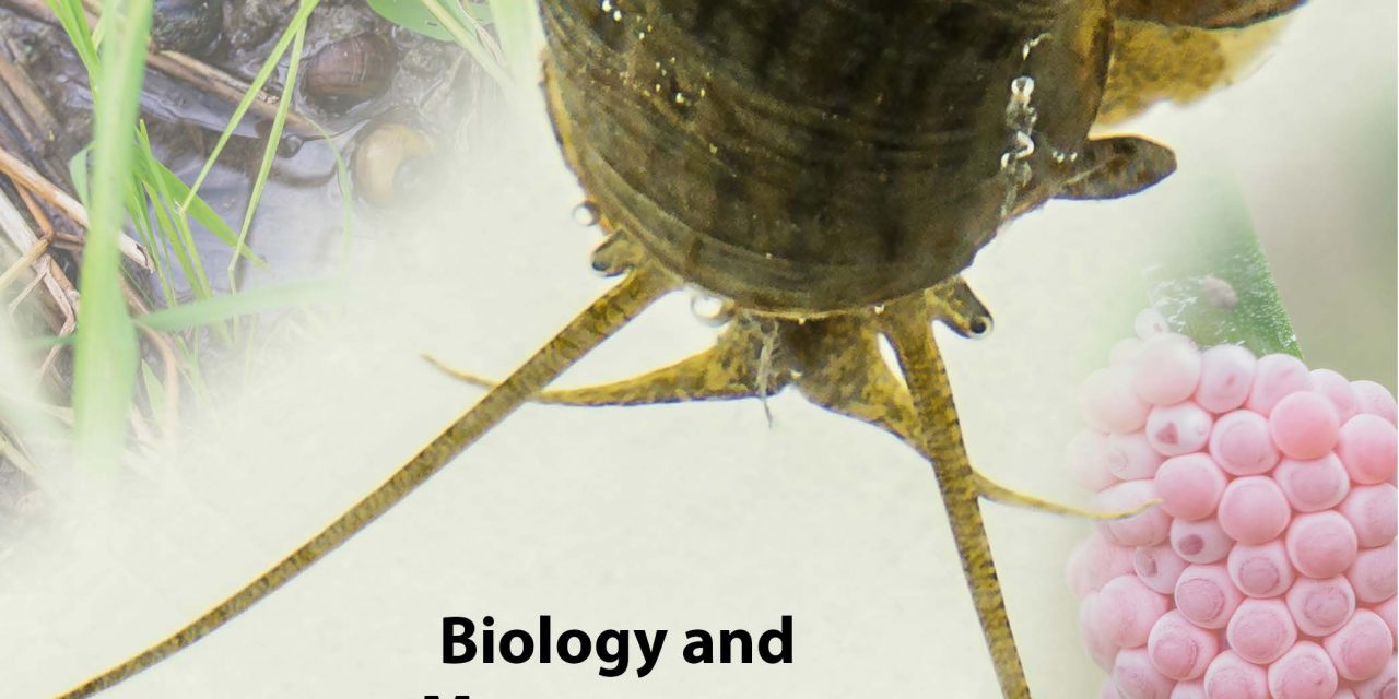Biology and Management of Invasive Apple Snails