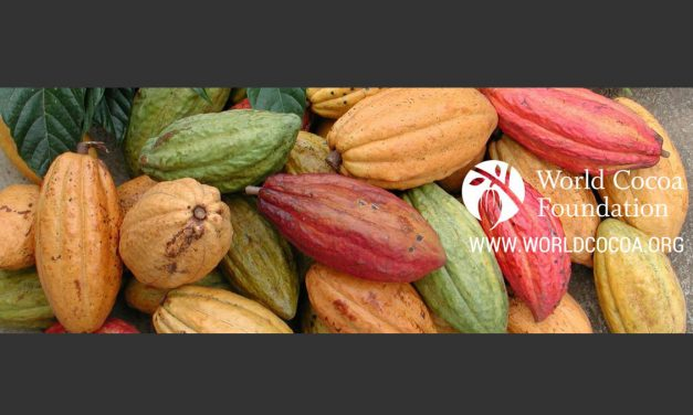 Vice President for Environmental Sustainability – World Cocoa Foundation