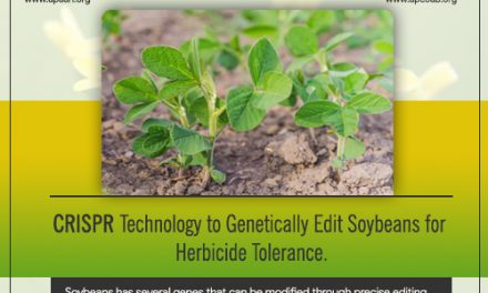 CRISPR Technology to Genetically Edit Soybeans for Herbicide Tolerance