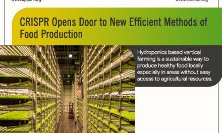 CRISPR Opens Door to New Efficient Methods of Food Production