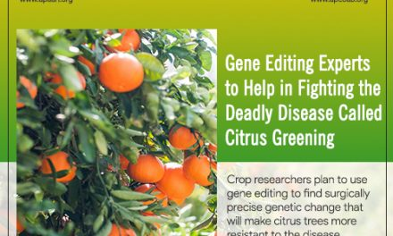 Gene Editing Experts to Help in Fighting the Deadly Disease called Citrus Greening