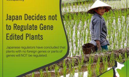 Japan Decides Not to Regulate Gene Edited Plants
