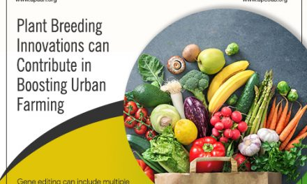 Plant Breeding Innovations can Contribute in Boosting Urban Farming