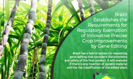 Brazil Establishes the Requirements for Regulatory Exemption of Innovative Precise Crop Improvements by Gene Editing