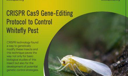 CRISPR Cas9 Gene-Editing Protocol to Control Whitefly Pest