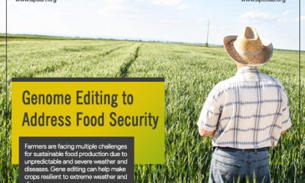 Genome Editing to Address Food Security