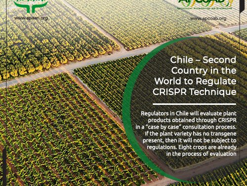 Chile – Second Country in the World to Regulate CRISPR Technique