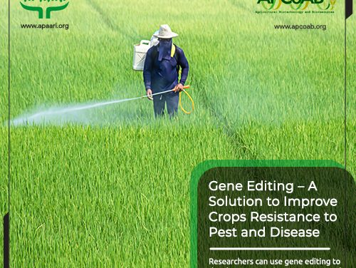 Gene-Editing – A Solution to Improve Crops Resistance to Pest and Disease