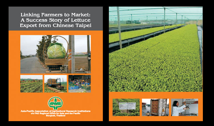 Linking Farmers to Market: A Success Story of Lettuce Export from Chinese Taipei