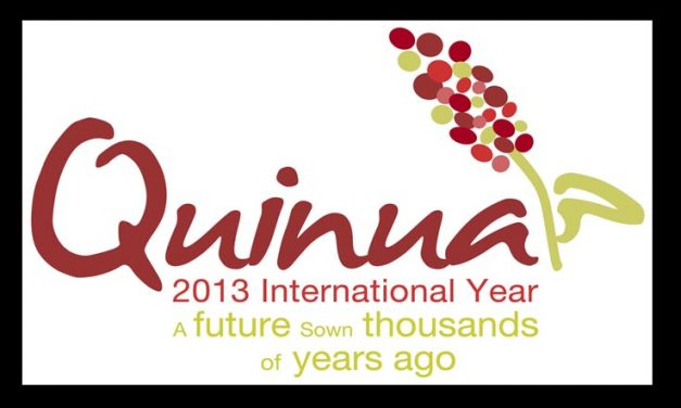 International Year of Quinoa (IYQ) 2013
