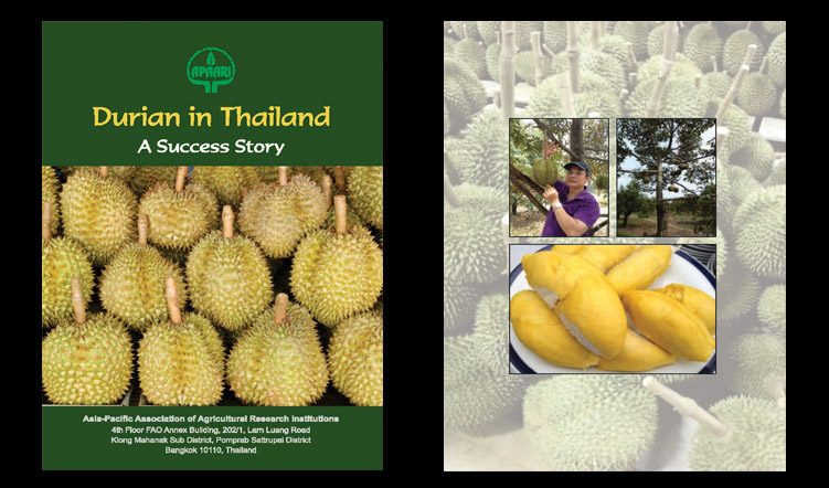 Durian in Thailand – A Success Story
