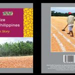 GM Maize in the Philippines