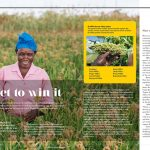 Magazine articles on Smart Food Initiative – iMPACT