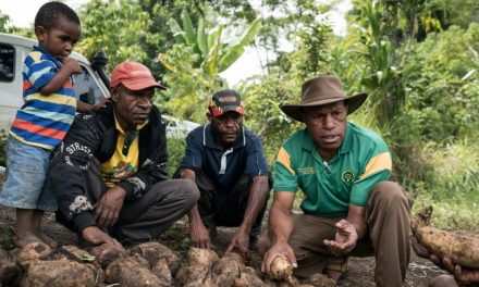 iJDF, a new program developing capacities in the Pacific region