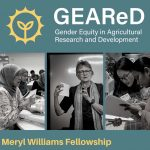 The Meryl Williams Fellowship
