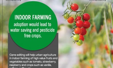Indoor farming adoption would lead to water saving and pesticide free crops