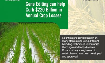 Gene editing can help curb $220 billion in annual crop losses