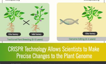 CRISPR Technology Allows Scientists to Make Precise Changes to the Plant Genome