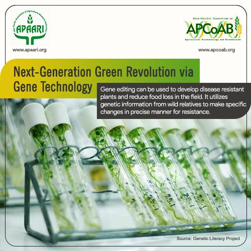 Next-Generation Green Revolution via Gene Technology