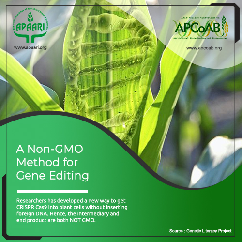 A Non-GMO Method for Gene Editing