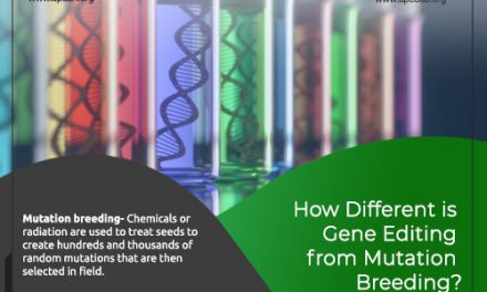 How different is Gene Editing from Mutation Breeding?