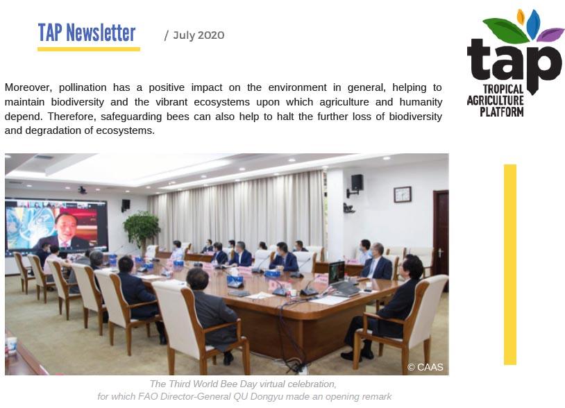 TAP Newsletter July 2020