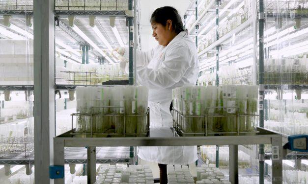 APAARI participating in CGIAR's series of webinars on International Year of Plant Health