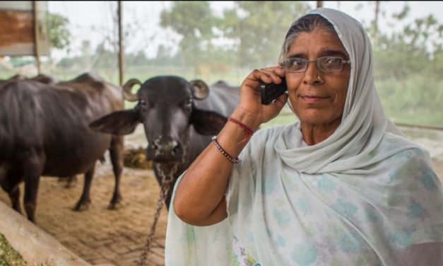 Call for Expression of Interest: The Impacts of Digital Support Tools in Agriculture