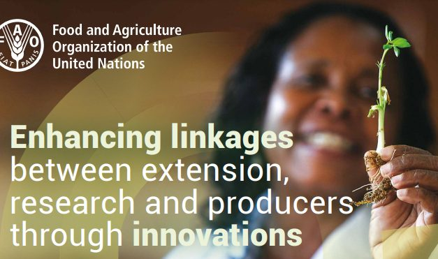 Enhancing linkages between extension, research and producers through innovations